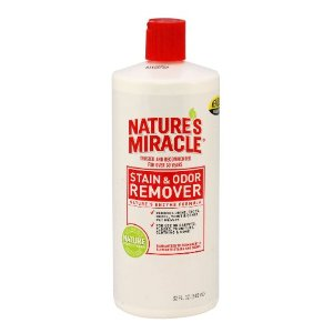 Commercial Enzymatic Cleaner For Dog Urine Odor