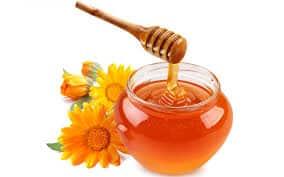 Honey for canine mange